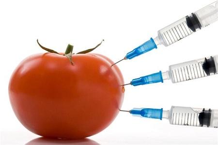 Food Toxin