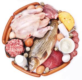 Protein Allergy
